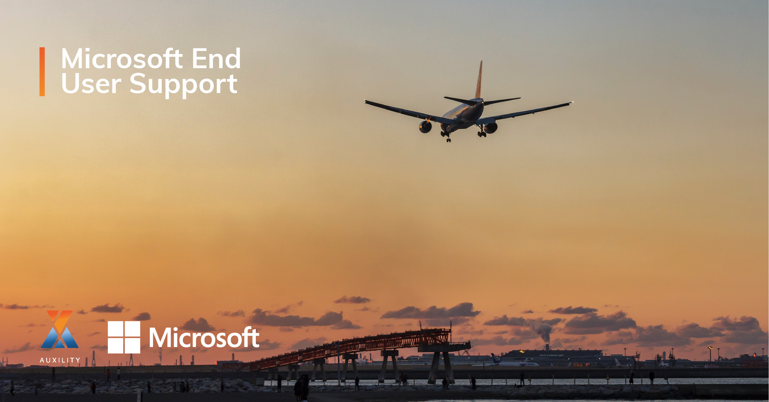 Microsoft End User Support